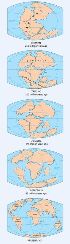Pangea Continent Map - Continental Drift - Supercontinent