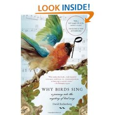 New Why Birds Sing by David Rothenberg. A journey into the mystery of bird song. Common Birds, Nature Music, Film Watch, Natural Phenomena, Natural World, Bird Feathers, Pet Birds, Documentaries, Mystery