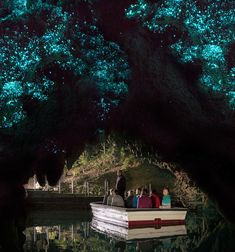 Boat the Waitimo Glowworm Caves in NEW ZEALAND • There's nothing else like it. Be sure to sing while you're in there. The acoustics are unreal.