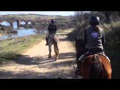 Paseos a Caballo, orilla del rio Tajo www.deportesyaventuraslaisla.com/rutas-a-caballo.html