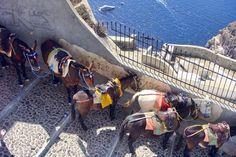 Donkey ride ~ Santorini by Rui Pedro Vieira on Flickr