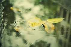 Calm between storms. | Flickr - Photo Sharing!