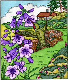 Bonnie Phares (18+ division) from Backyard Nature Coloring Book