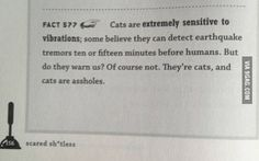 Found this in a book of random facts!
