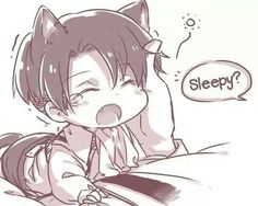 Read [Levi] Neko Levi from the story Attack on Titan/ Shingeki no Kyojin (Various X Reader) by (knonyuu) with reads.