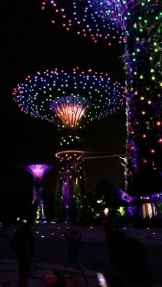 Singapore's Supertree Grove at Gardens by the Bay