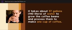 It takes about 37 gallons (140 liters) of water to grow the coffee beans and process them to make one cup of coffee.