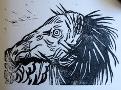 California Condor print by Liz Carlson Arts and Illustration 2014