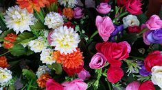 colorful flowers,Rome Italy  http://www.just-commerce.net
