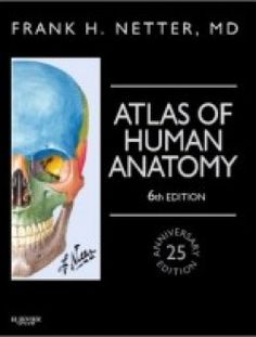 Atlas of Human Anatomy, Professional Edition, 6e - Free eBook Online