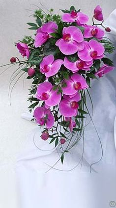 pinterest flores de phalaenopsis - Buscar con Google