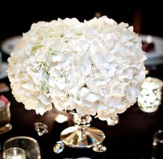 white hydrangea - this but with a glass pedestal