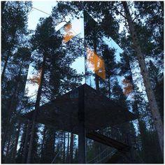 Amazing Swedish treetop hotel room