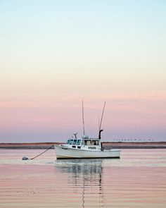 A photo from the Chatham Fish Pier by Kelly Cronin Photography. Nothing beats a warm Summer day in Chatham. The fish pier is one of my all time favorite places to photograph. Cape Cod