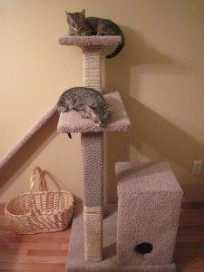 Homemade cat scratch post/playhouse