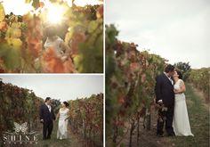 Lynley and Simon - the vines look so amazing going into Autumn via Shine Studios Railroad Tracks, Vines, Studios, Autumn, Weddings, Park, Amazing, Fall Season, Wedding