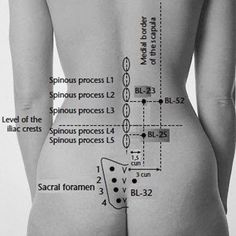 Acupressure point or Bladder 23 is also known as the Kidney Shu and vital points of acupressure lower back pain. back pain dolor de espalda Meridian Acupuncture, Acupuncture Benefits, Acupuncture Points, Massage Benefits, Acupressure Points, Reflexology Points, Massage Tips, Massage Techniques, Foot Massage