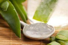 Aloe Vera gel. Come estrarre il gel e 10 modi per usarlo