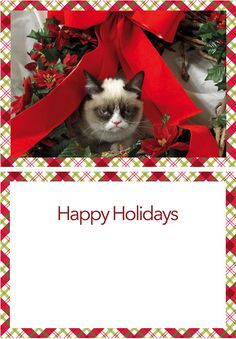 It's a Grumpy Cat Holiday Card!