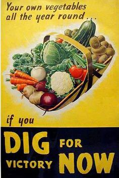 Your Own Vegetables All the Year Round - If You Dig For Victory Now -- WWII propaganda poster (Great Britain, UK). Dig For Victory, Womens Institute, Ww2 Posters, Food Posters, Vintage Gardening, Victory Garden, Vintage Advertisements, Vintage Ads, Vintage Images