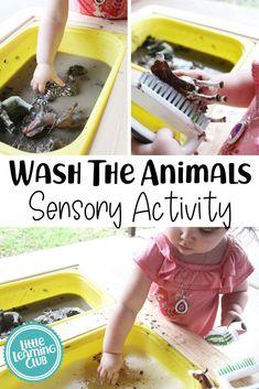 Wash The Animals Sensory Bin. A great outdoor sensory bin idea for toddlers. Sensory activities for 2-3 year olds. Outdoor activities for spring and summer