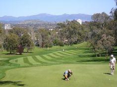 C Golf Courses
