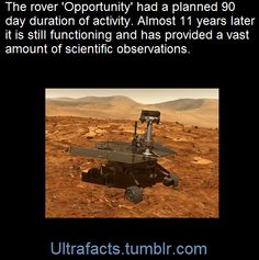 pizzaismylifepizzaisking:ultrafacts:Opportunity left Earth July 7, 2003, aboard a Delta II rocket en route to a landing site at the Martian equator called Meridiani Planum. The rover made its final approach to Mars on Jan. 25, 2004. It plowed through the Martian atmosphere, popped out a parachute and then vaulted to the surface in a cocoon of airbags.Originally intended to last for about 90 days, the machine is still trekking after 11 years on the Red Planet. [x](Fact Source) For more facts…