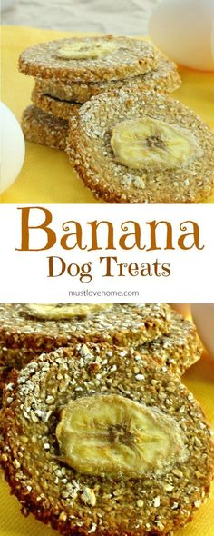 Made with only three ingredients, these easy homemade double Banana Dog Treats will have your furry canine friends begging for more! /KaufmannsPuppy/