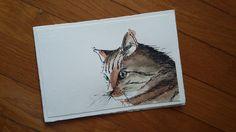 Gatto  -  china ed acquerello