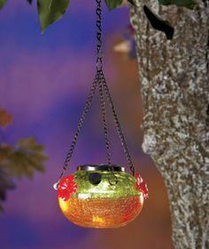 solar hummingbird feeder | Details about GREEN Solar Glass Hummingbird Feeder Birds Drink from 3 ...