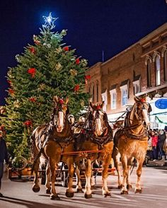 Enjoy a old-fashioned Christmas in Manistee, Michigan, which holds its annual Victorian Sleighbell Parade and Old Christmas Weekend