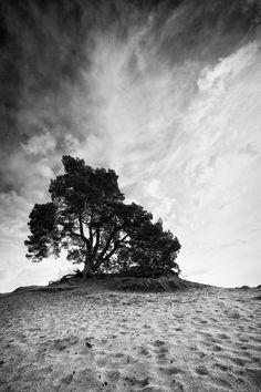 Fire in the Sky by Ruud van Putten on 500px