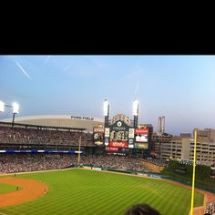 Tigers game