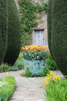 love the idea of a big basin with bulbs as a focal point-  after spring fill with annuals
