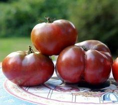 Deep Dark Cherokee Purple Tomato Seeds: tomatoes