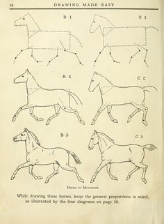 Drawing made easy : Horse