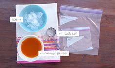 Super Fast Sorbet in a Bag   Ziploc® Fresh 180˚
