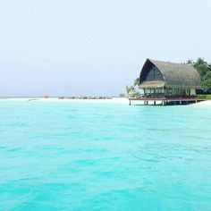 Hotels-live.com/cartes-virtuelles #MGWV #F4F #RT #Maldives #Wedding #venue  - Tag who you want to marry here  Angsana Velavaru @angsanahotels ___ #travellersplanet by travellersplanet https://www.instagram.com/p/BFgwRp4qLEK/