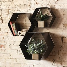 Wall storage should never be boring. And it won't be, with these innovative hexagon cubbies. Just add air plants, knickknacks, and books.  Find the Hexagon Wall Cubbies - Set of 3, as seen in the Inside the Fueled Collective Collection at http://dotandbo.com/collections/inside-the-fueled-collective?utm_source=pinterest&utm_medium=organic&db_sku=89362