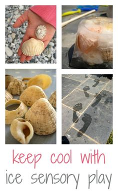 For a great way to keep kids cool and to enjoy some sensory play, pop some shells in the freezer! Here's how to make some ice cool sensory blocks.