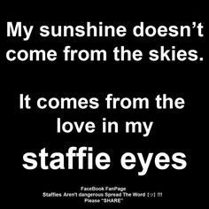 This is so true. Staffies are wonderful, loyal, gorgeous dogs. It is dog owners that make some poor dogs bad.