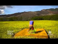 Love these sequences. AM/PM Yoga for Beginners | Rodney Yee  Colleen Saidman