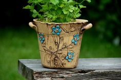 Flower Pot by Lavender