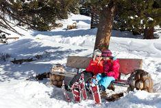 Skifahren ist doof! Und wehe dem, der das Gegenteil behauptet!  Morgens zwei Stunden auf die Skier. In abwechslungsreichen Übungseinheiten lernen, wie das mit dem Bremsen und den Kurven geht. Zwischendurch gelobt werden, Kekse futtern und Tee trinken. Am Nachmittag dann andere Winterabenteuer genießen. Iglu bauen, Rodeln, Schneeschuhwandern – eben alles was der Schnee an Spaß hergibt!  Klingt gut? Ist gut! Und gibt es im Familienskigebiet Hochzeiger! Shovel, Outdoor, Drinking Tea, Biscuits, Skiing, Outdoors, Dustpan, Outdoor Games