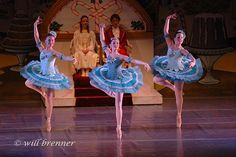 ✯ Marzipan Trio - Ballet Dancers Ohio Nutcracker Suite .. Will Brenner Ballet Photography Columbus, Ohio✯