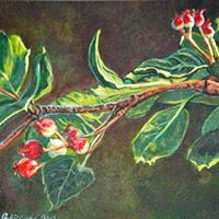 Plant Leaves, My Arts, Spring, Plants, Painting, Beautiful, Paint, Draw, Planets