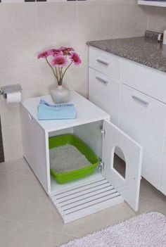 Cats Toys Ideas - Cat Litter Cupboard - Ideal toys for small cats