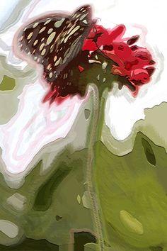 Butterfly flower by Ineke Planken