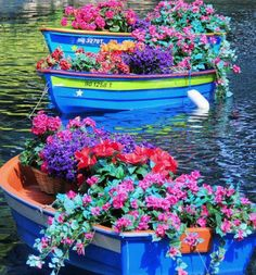 Flowers by the boatload!