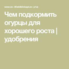 Мучнистая роса – меры борьбы, как бороться с мучнистой росой на ...